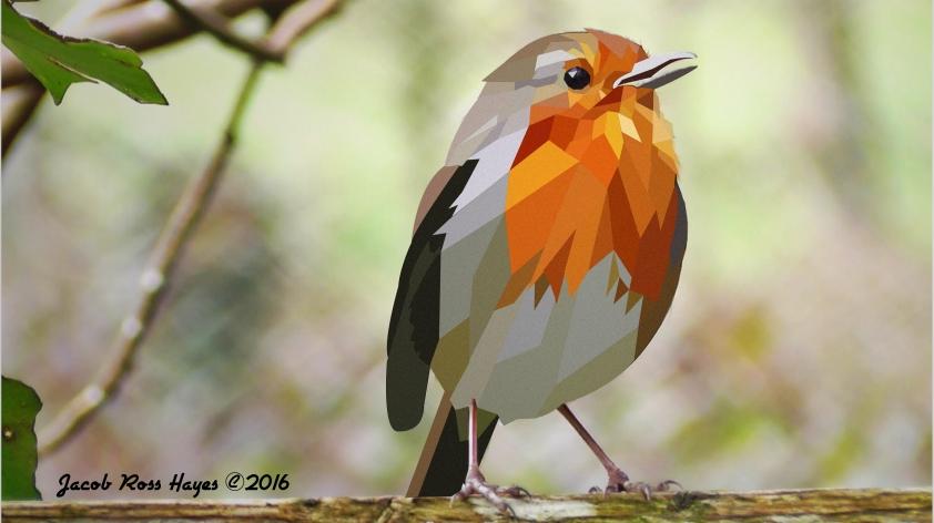 Birday